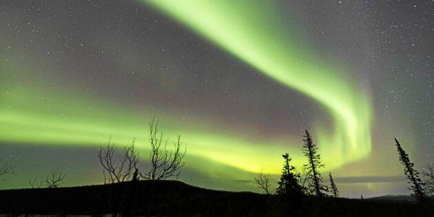 Norrbotten lockar allt fler turister