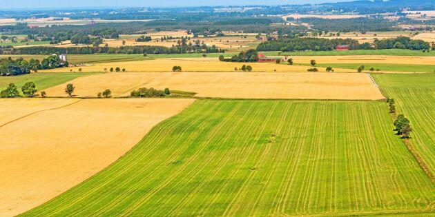 Osäker framtid för svensk jordbruksmark
