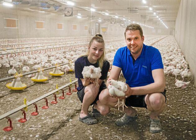 Iruna Kazakeviciute och Olof Boson med några av de 1,5 miljoner kycklingar som lämnar Torps gård varje år.