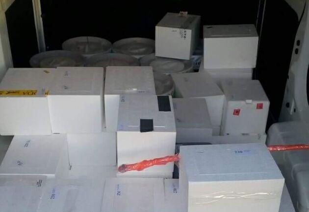 Över 8 000 lådor med färsk hingstsperma levererade hans företag förra säsongen. För att kunna klara av uppdraget fick han på kort varsel anställa tio förare som fick börja köra olika sträckor. Men det strömmade in ansökningar. Till tio tjänster fick han över 100 sökande från hela landet.