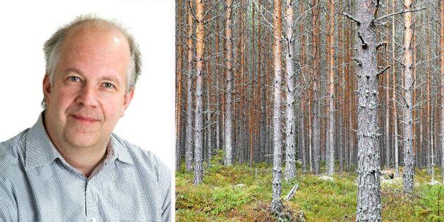 Skogskonto får överlåtas utan skatt