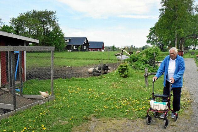 De olika djuren på gården har fått Sven Hultström att trivas bra.