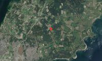 Nya ägare till skogsfastighet på Gotland