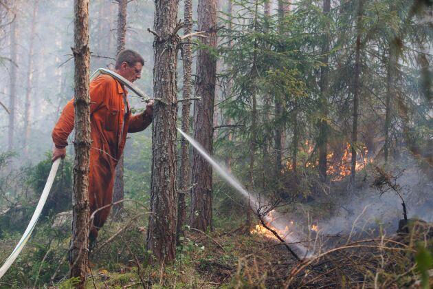 Ett färskt avgörande från HD kan få stor betydelse för de skogsägare som söker ersättning för skador som uppkom i samband med branden.