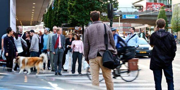 Myndighet: Det här bör staten flytta från Stockholm