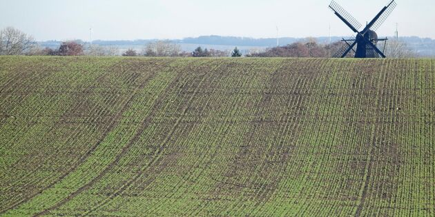 Kommunens byggplaner på åkermark stoppas