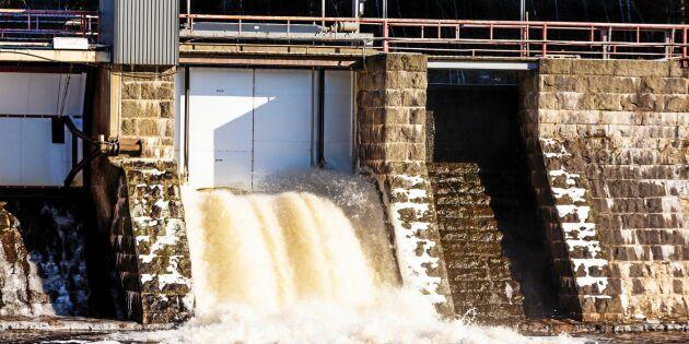 Myndigheter får stark kritik i miljödom