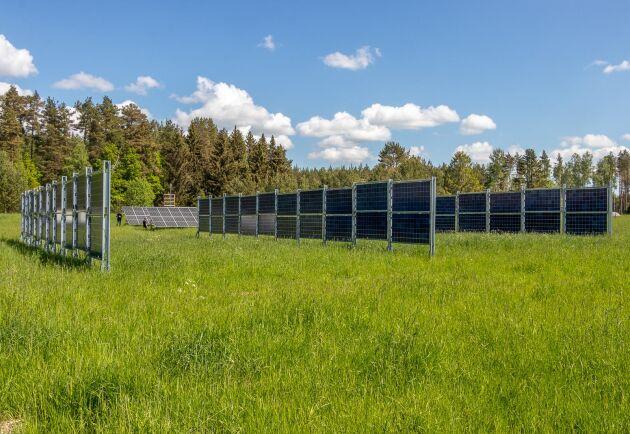Bengt Stridh har själv installerat solpaneler på åkermark vid Kärrbo prästgård utanför Västerås.