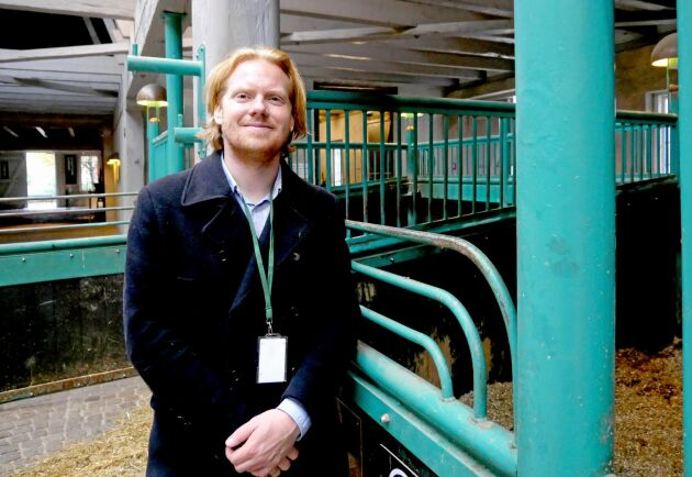 """""""Hästarna är en viktig del av Carlsbergs historia och därför är det viktigt att de används för att sprida och förvalta den"""", säger Carlsbergs stallmästare Anders Callesen."""