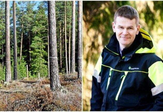 """Skogsstyrelsens generaldirektör Herman Sundqvist: """"Det finns en probleminsikt, en nyfikenhet och en genuin vilja till förändring som bådar gott. Men det räcker inte."""""""