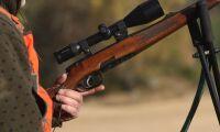 Jägare skottskadad i samband med viltsvinsjakt