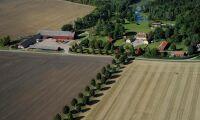 Nya taxeringsvärden för 356000 lantbruksfastigheter
