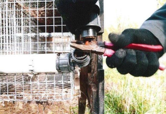 De tilltalade dokumenterade skadegörelse som de utförde vid minkfarmen. Bland annat klipptes sladdar till burar.