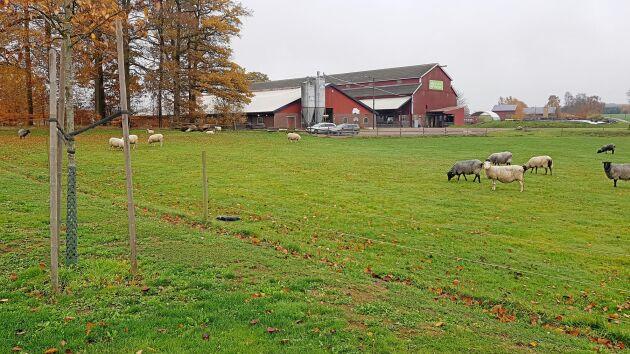 Brunnarna har sinat sedan flera månader på Gunnaröds gård i Bromölla.
