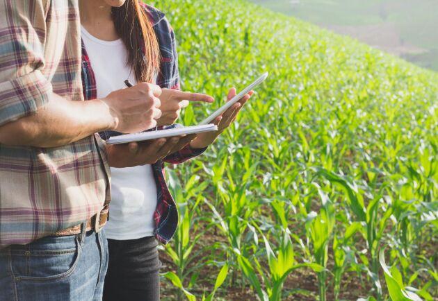 ATL har vaskat fram några utbildningar som doftar gårdsdjur, skog och växtlighet. Arkivbild.