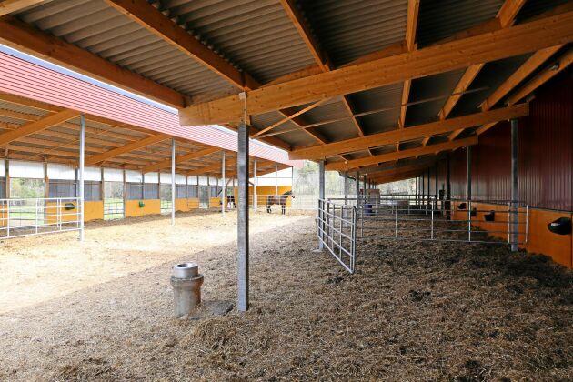Nu slipper hästverksamheter ansöka om bygglov.