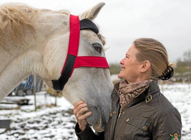 Uppkopplad. GPS-position, tuggmusklernas arbete och huvudets rörelsemönster registreras av sensorn i pannan på djuret. Lusitanohingsten Xelim var en av de första uppkopplade hästarna på gården utanför Allerum i Skåne.
