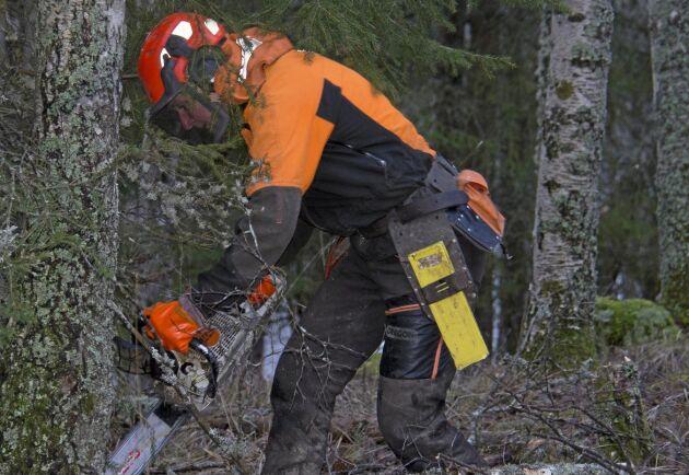 """Kursen """"Klimatanpassad skog"""" vill utbilda och inspirera skogsägare."""