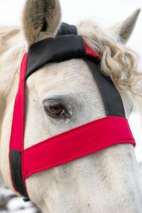 Senorerna känner av om hästen tuggar, står, ligger eller rullar.