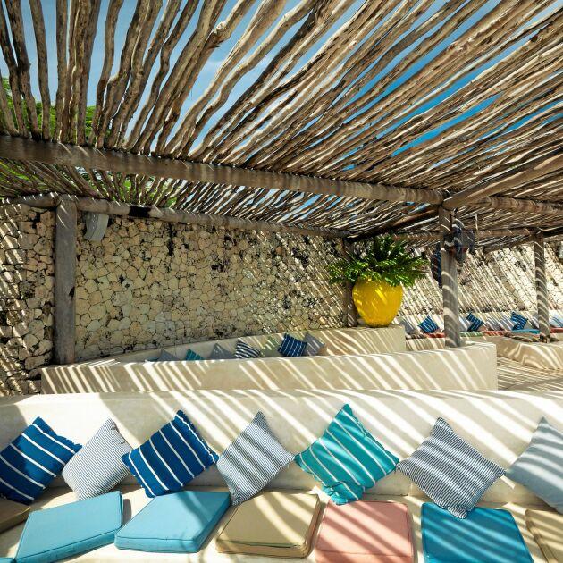 Skuggande tak av barkade slanor.
