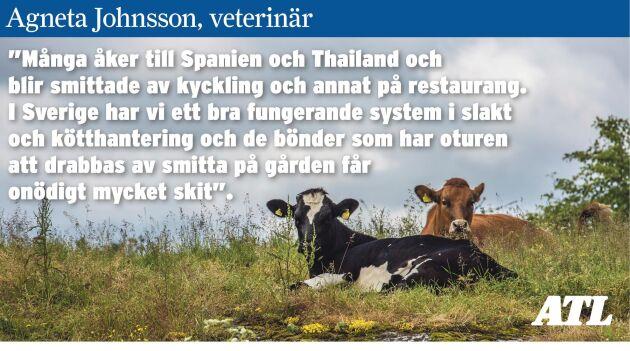 Under 1 procent av humansmittan är inhemsk i Sverige. (Djuren på bilden har inget med artikeln att göra)