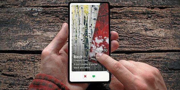 Timber – dejtingtjänsten för trädälskare
