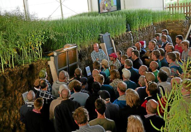Gropen där markstruktur studeras, har i år delvis vigts åt plöjningsfri odling. Bland annat kan man se vad maskarnas arbete betyder för dräneringen.