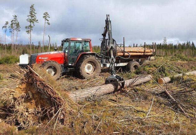 Valmet 8000 jobbar i skogen med 14-tons vagn.