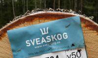 Sveaskog ökar rörelseresultatet
