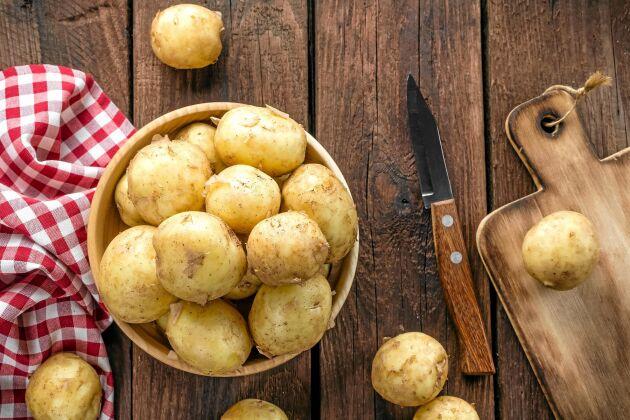 Potatis är källan till (nästan) allt gott - så många varianter det finns!