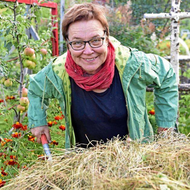 Lena Israelsson skrev om trädgård och odling på ett nytt miljömedvetet sätt.