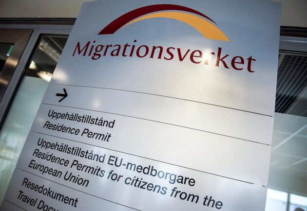 Vi behöver se över om Migrationsverket eller en annan myndighet är bäst kämpad att säkerställa korta och effektiva handläggningstider, tycker Moderaterna.