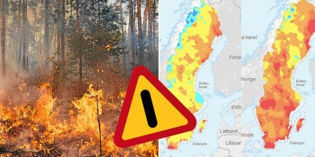 Varning för stor brandrisk – här är det eldningsförbud