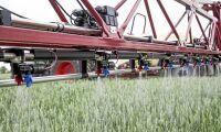 Kemiskt växtskydd för tyska ekoodlare
