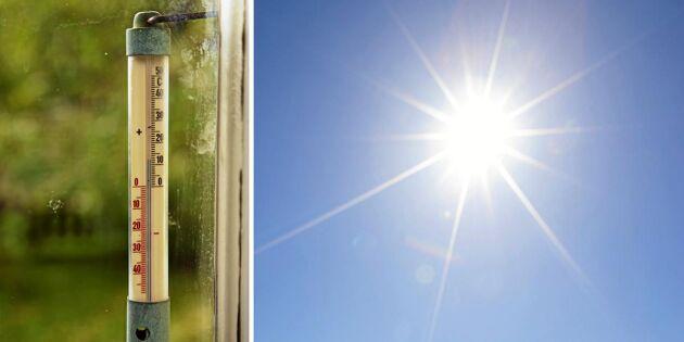 Efter rekordsommaren – så påverkar klimatkrisen Sverige