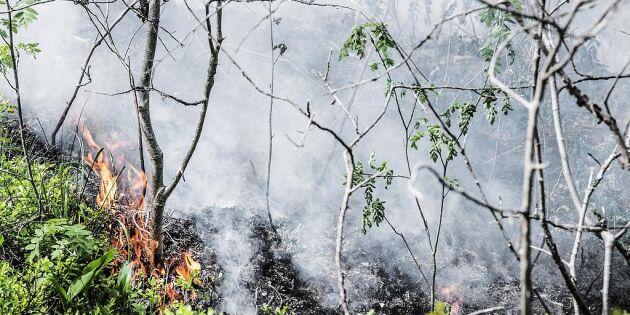 Eldningsförbud i delar av Västerbottens län