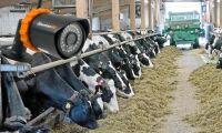 Ny övervakningskamera för lantbruket