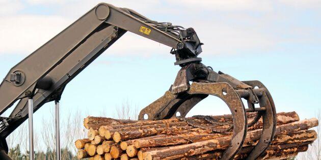 Ett fungerande skogsbruk kräver en stark äganderätt