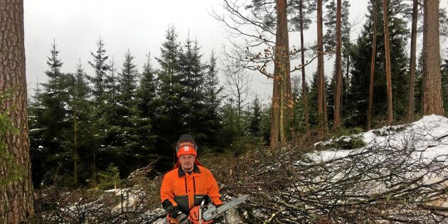 Skogsägare utan rättsskydd