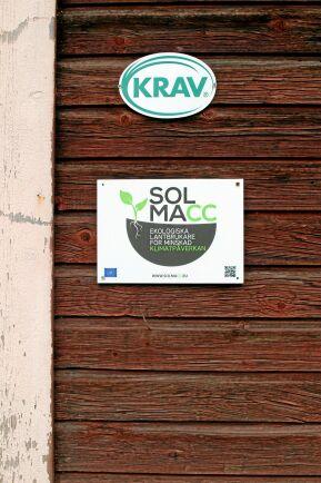 Försöken med alléodlingar görs inom ramen för EUs SOLMACC-projekt och handlar om att försöka minska jordbrukets klimatpåverkan.