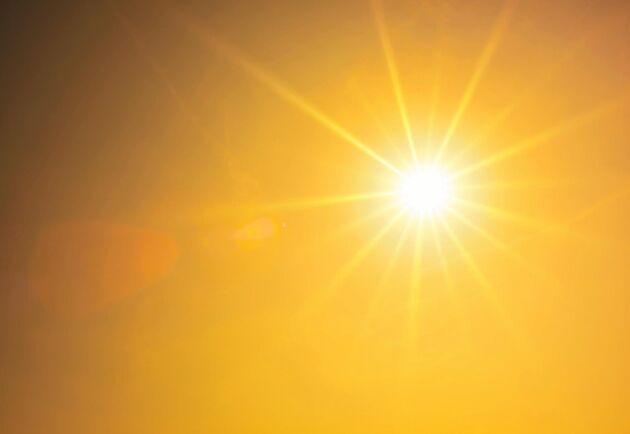 Forskare förutspår att de närmaste fem åren kommer att domineras av ovanligt höga temperaturer.