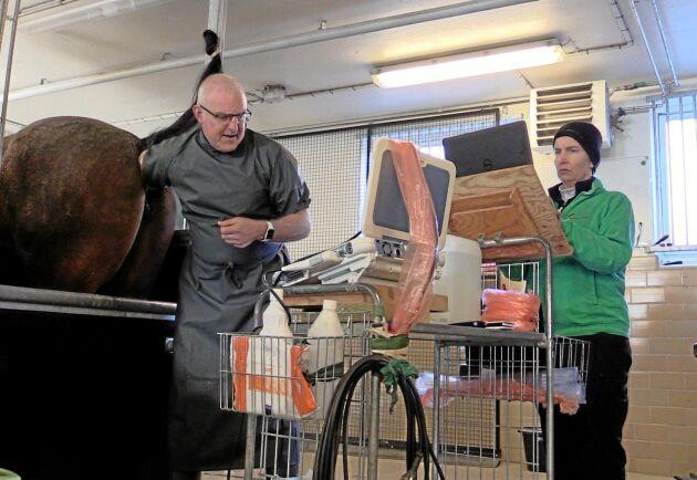 """Johan Hellander, veterinär och stuterichef på Menhammar Stuteri: """"Hästaveln är beroende av snabba och säkra spermaleveranser""""."""