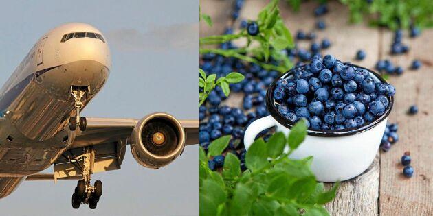 LISTA: Här är maten som kommer till Sverige – med flyg