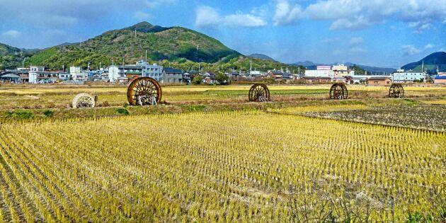 Japansk industri lyfter jordbruket