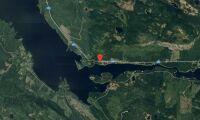 Skogsfastigheter i Jämtland såld