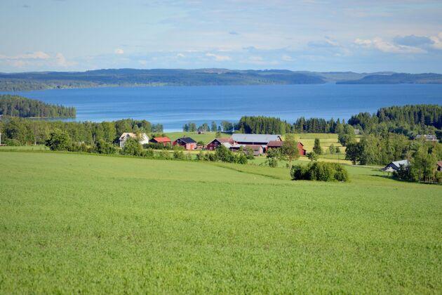 Brunflo i Jämtland. Foto: IBL