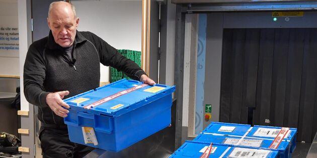 Frövalv på Svalbard räddade syrisk genbank