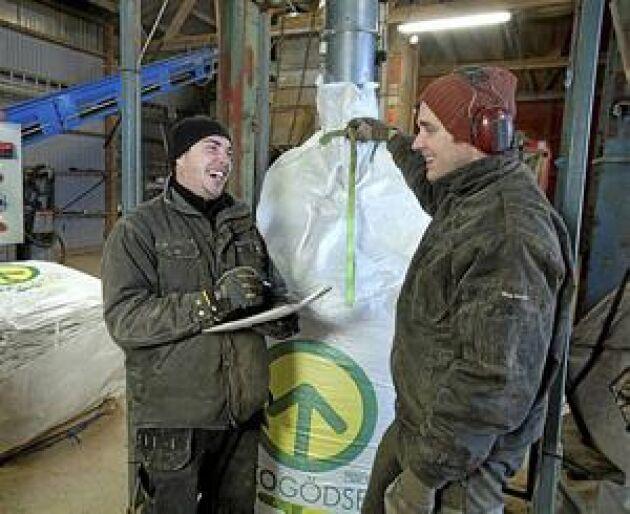 Kompletterande sysslor. När det är lågsäsong i växtodlingen är det i stället högsäsong i gödselverksamheten på Slätte gård. Daniel Carlsson (till höger) är en de anställda som jobbar med båda sakerna. Totalt arbetar 12 stycken i Emil Olssons verksamhet i Töreboda, Västergötland. Foto: Mikael Ljungström