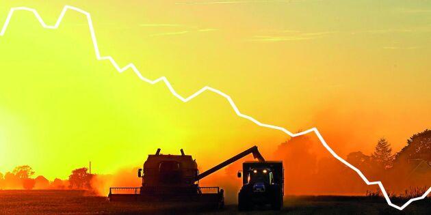 Oväntad prispress slår mot svenska odlare