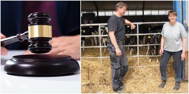 Mjölkbönder får rätt efter två års processande